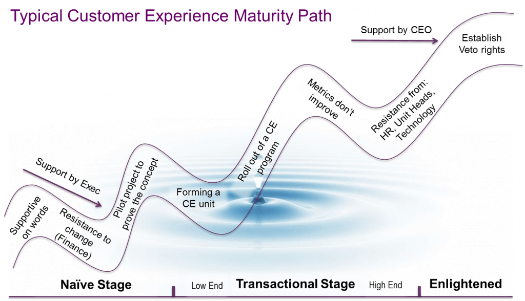 Customer Experience Governance Approaches & Maturity Stages